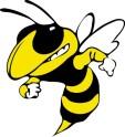 Shadow bee 2